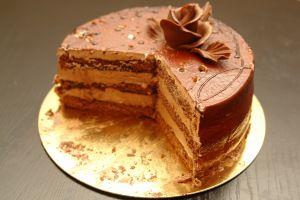 chocolate-cake-1161226-m.jpg
